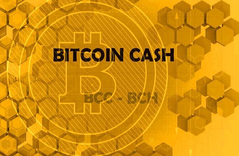 bitcoin-cash.jpg