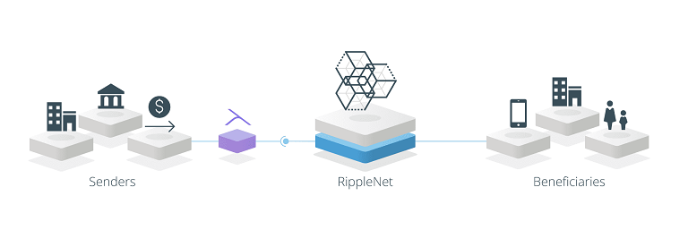 ripplenet-2.png