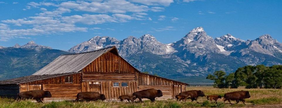 State_Wyoming.jpg
